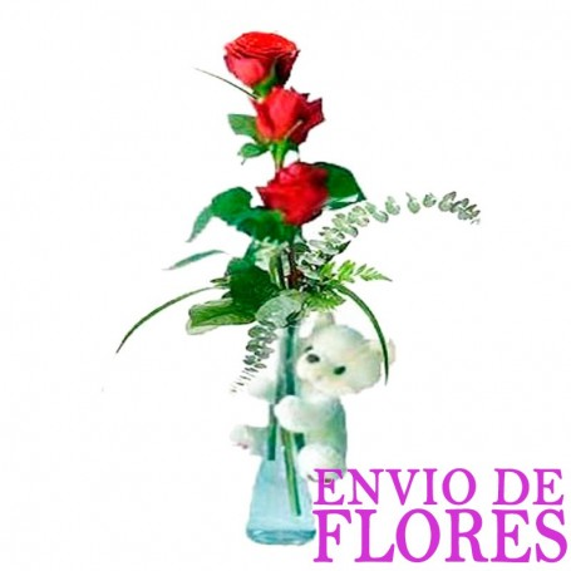 Florero de Rosas con Peluche - 3 Rosas