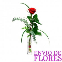 Florero con una Rosa Roja
