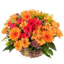 Cesta Mediana de Flores Mables y Gerberas Tonos Naranja