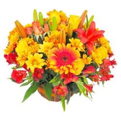 Cesta Mediana de Gerberas Liliums tonos Naranjos Mix Verano