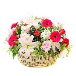Cesta Gigante de Gerberas y Rosas Primavera