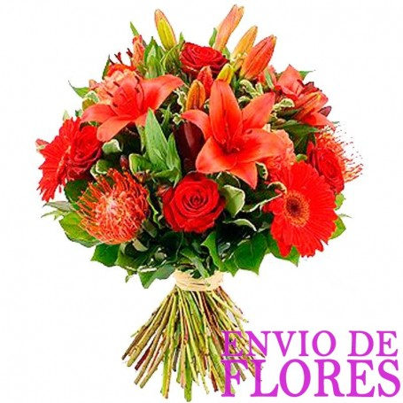 Ramos De Flores Lilium en Tonos Rojos