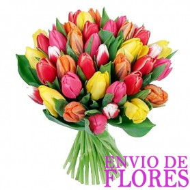 Ramos de 20 Tulipanes Mix Colores