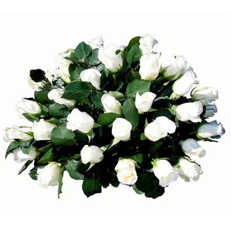 Condolencias en Ovalo 25 Rosas