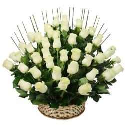 50 Rosas Para Condolencias en Base de Madera