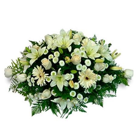 Flores para Condolencias en Ovalo