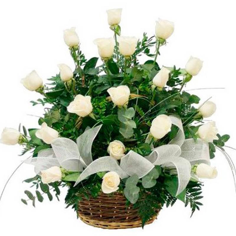 nuevo canastillo con rosas para condolencias 24 rosas blancas