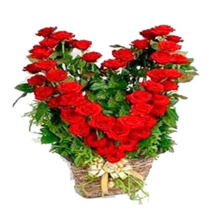 Cesta de Rosas Rojas Flotante
