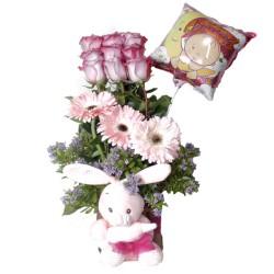 Canastillo Nacimiento 9 Rosas + Gerberas + Peluche + Globo es una Niña