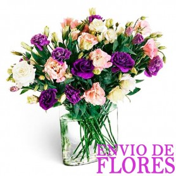 Florero con Flores rosadas y Purpura