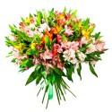 Ramo con 40 varas de Astromelias Multicolores