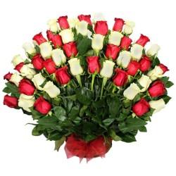 Arreglo de Condolencias Abanico 50 Rosas Blancas Rojas