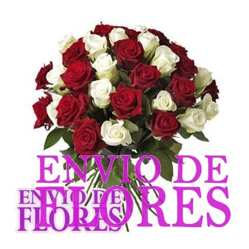 Ramo de Rosas - 24 Rosas Rojas y Blancas