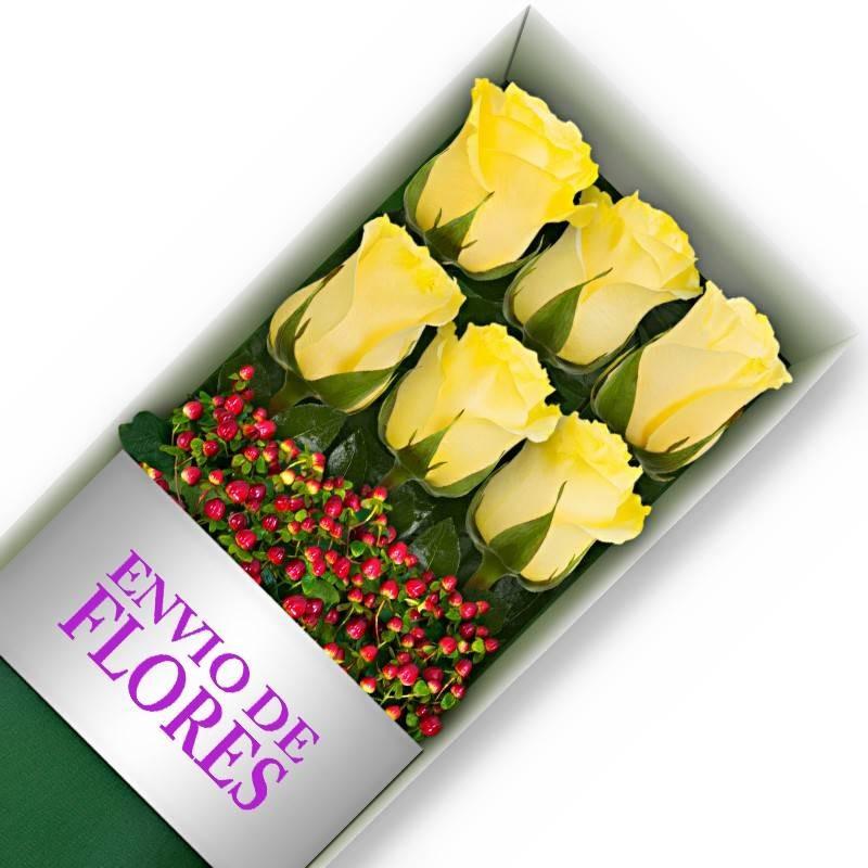 Caja de 6 Rosas Amarillas