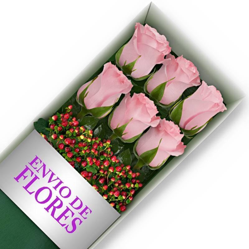 Caja de 6 Rosas Rosadas