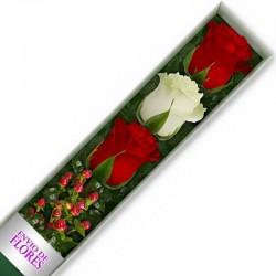 Caja de 3 Rosas Mix Rojas y Blancas