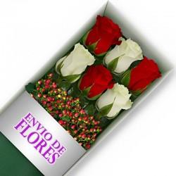 Caja de 6 Rosas Mix Rojas y Blancas
