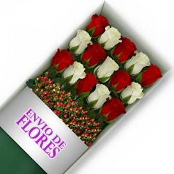 Caja de 15 Rosas Mix Rojas y Blancas