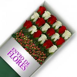 Caja de 18 Rosas Mix Rojas y Blancas