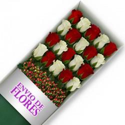 Caja de 20 Rosas Mix Rojas y Blancas