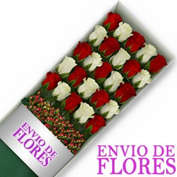 Caja de 24 Rosas Mix Rojas y Blancas