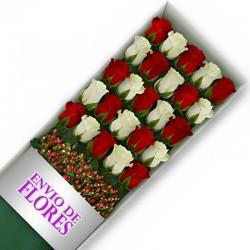 Caja de 25 Rosas Mix Rojas y Blancas