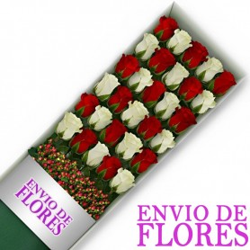 Caja de 30 Rosas Mix Rojas y Blancas
