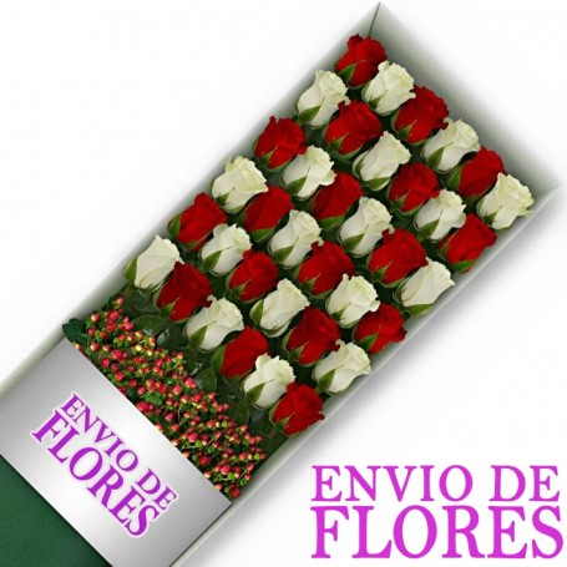 Caja de 36 Rosas Mix Rojas y Blancas