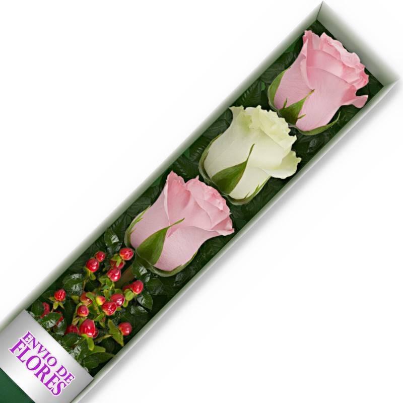 Caja de 3 Rosas Mix Rosadas y Blancas