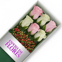 Caja de 6 Rosas Mix Rosadas y Blancas