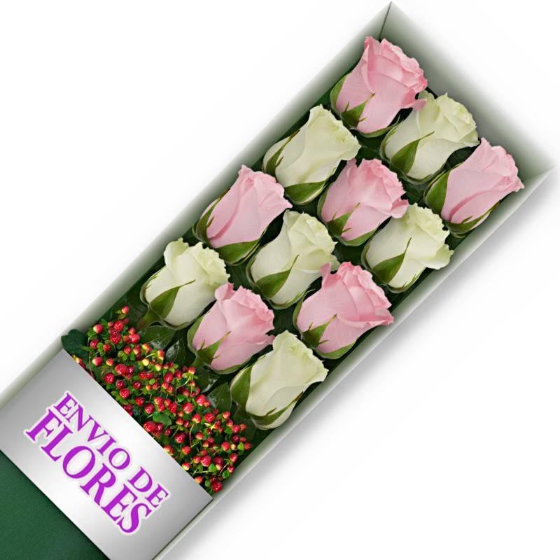 Caja de 12 Rosas Mix Rosadas y Blancas