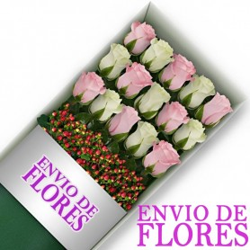 Caja de 15 Rosas Mix Rosadas y Blancas