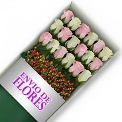 Caja de 18 Rosas Mix Rosadas y Blancas