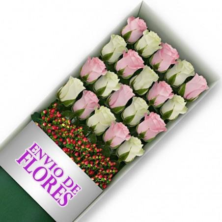 Caja de 20 Rosas Mix Rosadas y Blancas