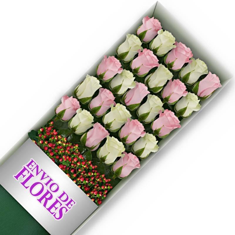 Caja de 24 Rosas Mix Rosadas y Blancas